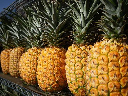 fruit several yellow pineapples pineapple