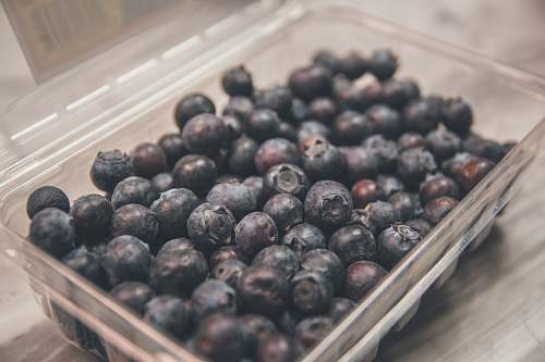 fruit shallow focus photo of blueberries on clear plastic case blueberry