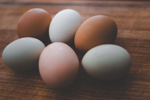 egg six brown and white egg on brown wooden surface chicken