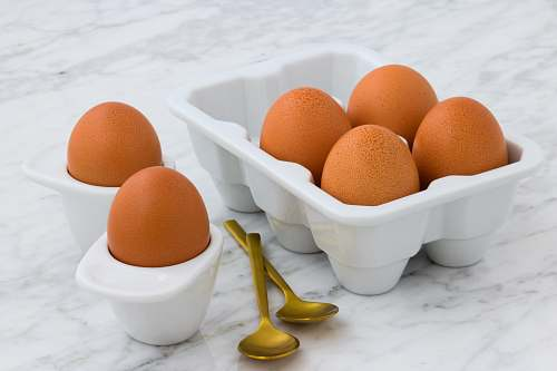 bowl six brown eggs on white egg sorter egg