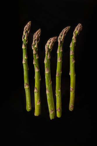 vegetable six green-and-brown asparagus with black background produce