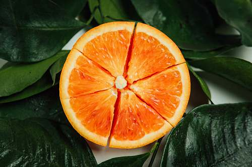 fruit sliced oranger orange