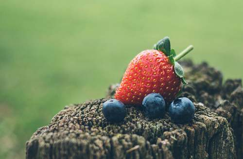 fruit strawberry and three blueberries in closeup photography strawberry
