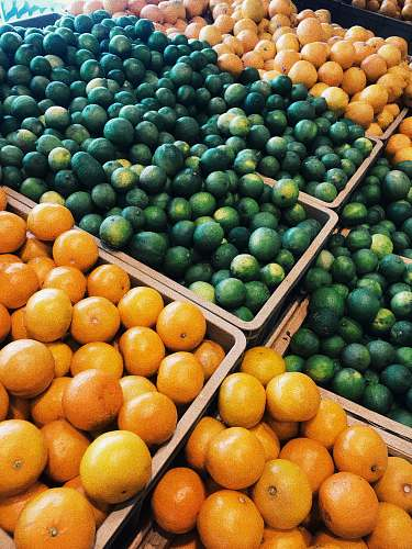 fruit tangerine and citrus fruits on display citrus fruit