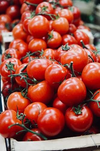 vegetable tomatoe lot flora