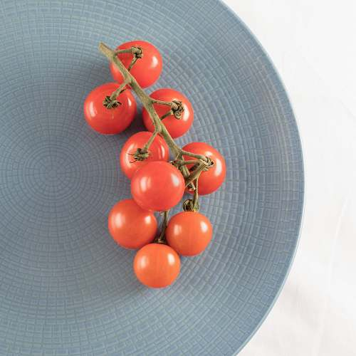 tomato top view photography of tomatoes on plate vegetable