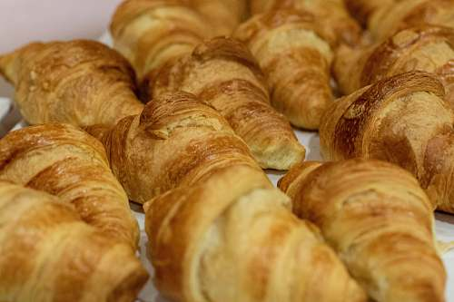 bread tray of brown croissant breads croissant