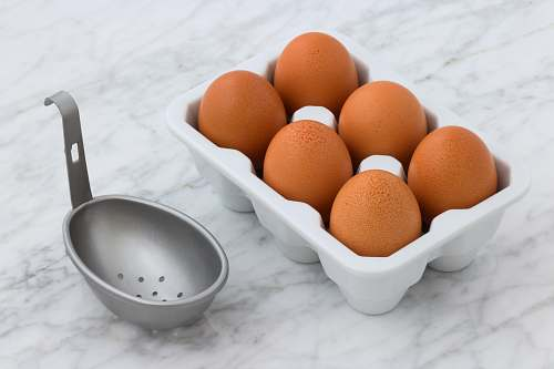 egg tray of poultry eggs bowl