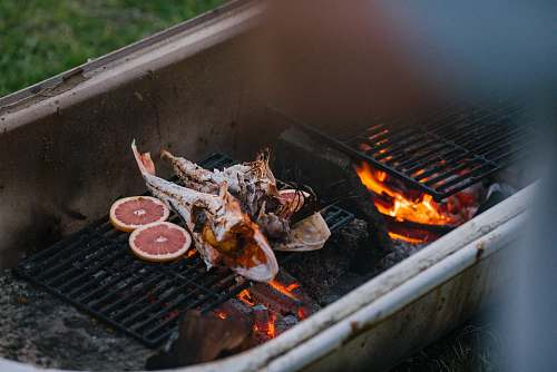 bbq two grilled fish new zealand
