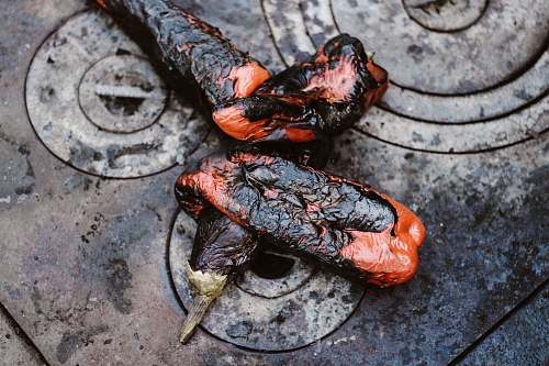 bbq two orange-and-black cooked eggplants on gray stove burnt