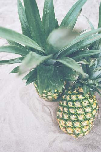fruit two pineapples pineapple