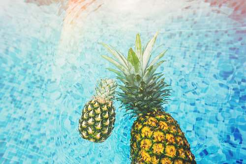 fruit two pineapples on body of water pineapple
