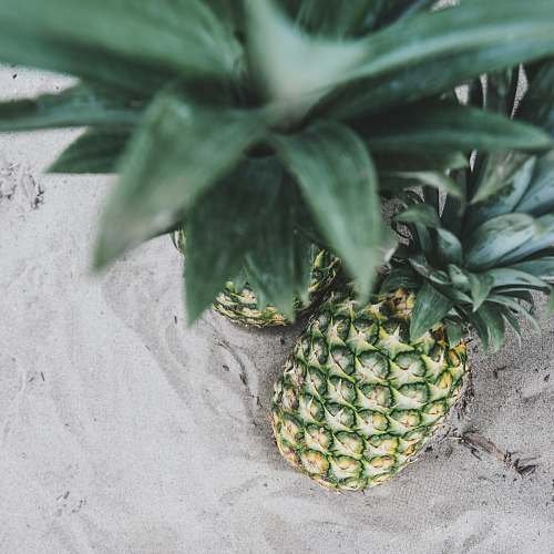 fruit two pineapples on sand pineapple