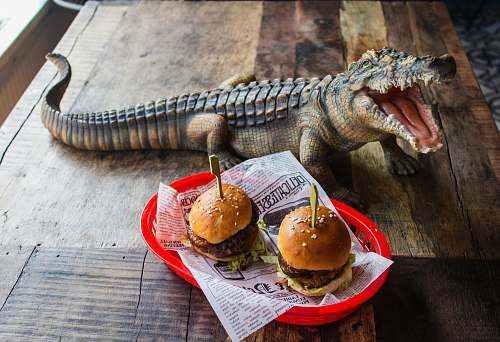 animal two sliders on plate beside crocodile statuette lizard