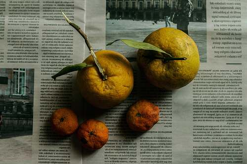 plant two yellow orange fruits citrus fruit