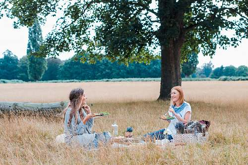 meal unknown persons sitting on brown grass vacation