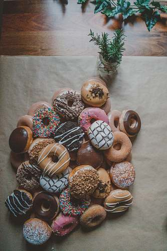 donut variety flavor of doughnuts potted plant