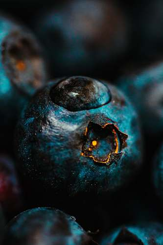 blueberry water drop on blueberry fruit