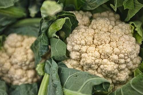 cauliflower white cauliflowers vegetable
