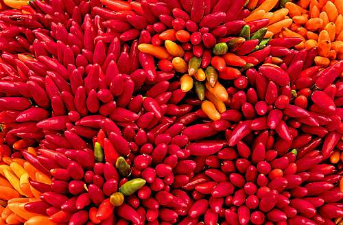 vegetable yellow and red chilis bean
