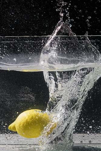 fruit yellow lemon fruit underwater plant