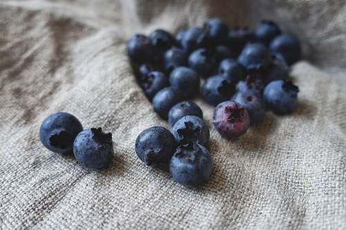 food blueberries placed on gray textile blueberry