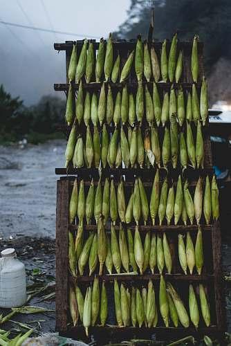 food corns on wooden shelf banana