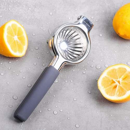 food gray fruit juicer plant