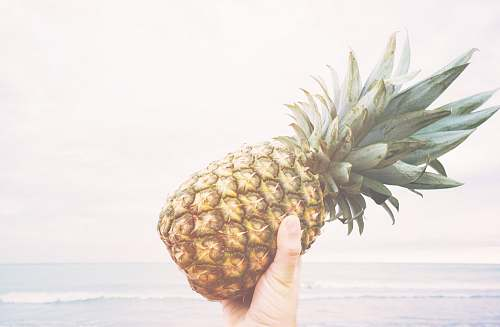 food person holding pineapple fruit pineapple