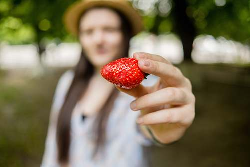 food person holding strawberry plant