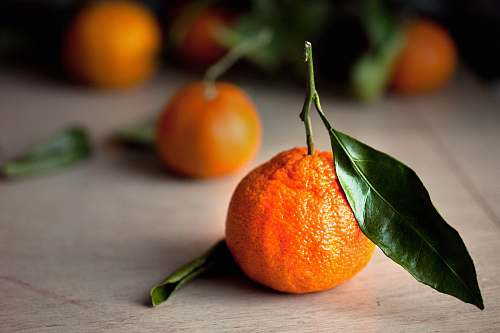 food selective focus photography of orange tangerine fruits citrus fruit