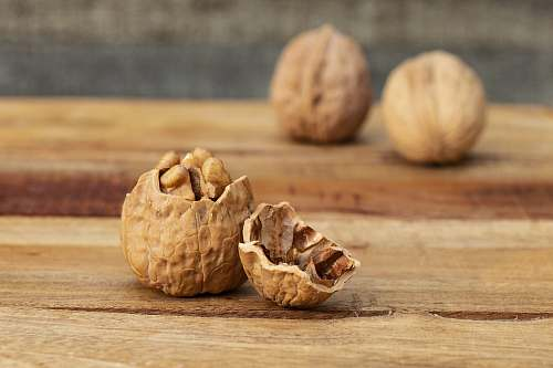 photo vegetable brown walnut nut free for commercial use images