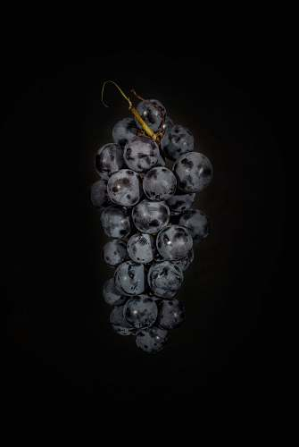food bunch of grapes fruit