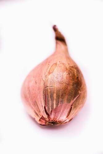 food onion vegetable vegetable