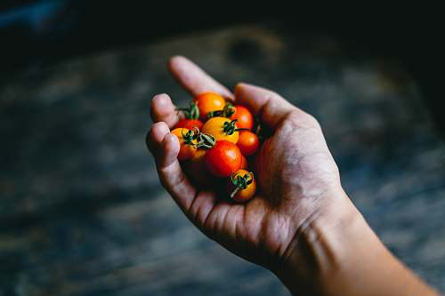 food person holding cherry tomatoes human