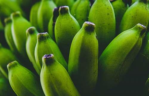 food shallow focus photo of green bananas fruit