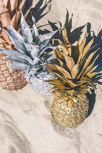 fruit three pineapples on sand pineapple