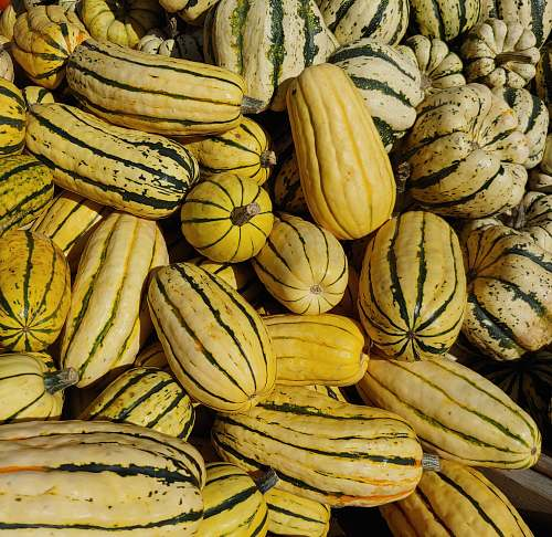 food yellow squash lot banana