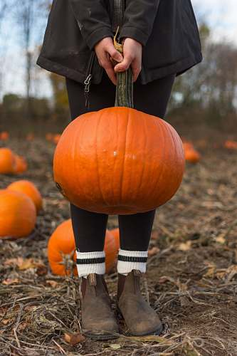 footwear child carrying orange pumpkin shoe
