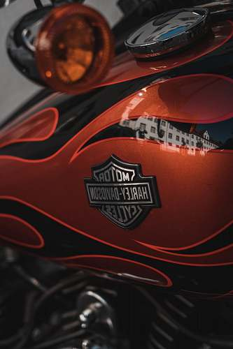 clothing red and black Harley-Davidson motorcycle brown