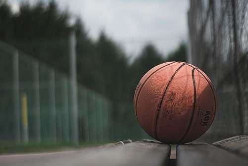 sport macro photography of brown NBA basketball ball on concrete surface sports