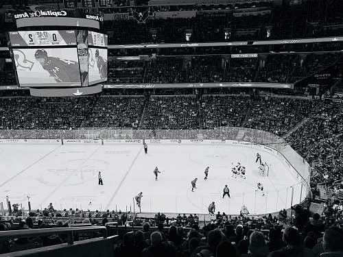 crowd ice hockey players on ice hockey arena washington