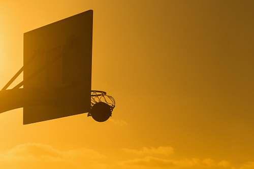 basketball basketball on basketball ring dribbble