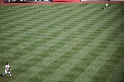 baseball baseball player about to throw baseball on field baseball field