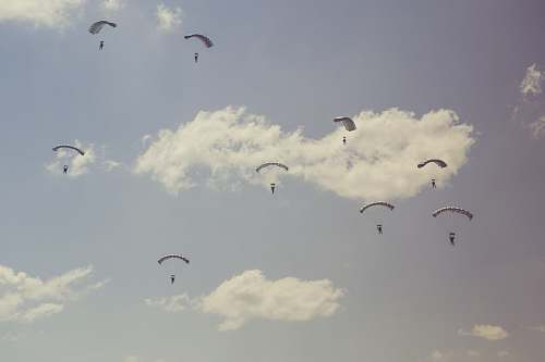 adventure people on parachutes during daytime leisure activities