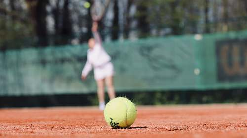 ball green lawn tennis ball on ground tennis
