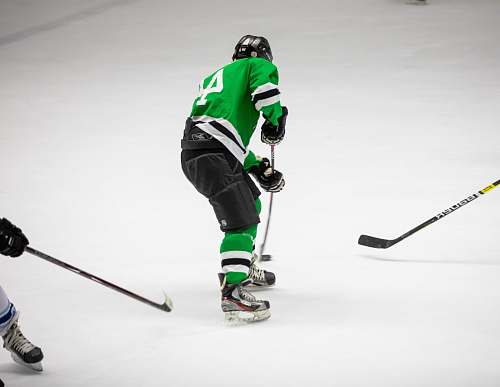 person hockey player wearing green jersey people