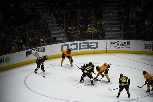 person people playing hockey inside stadium hockey