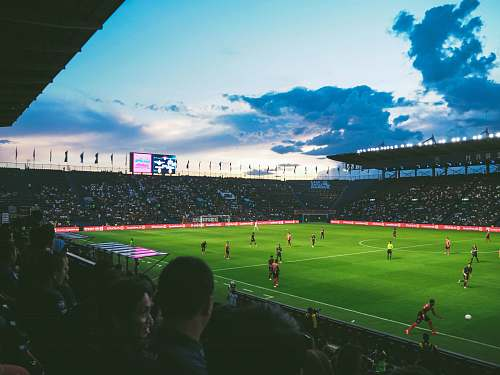 people people watching soccer arena stadium