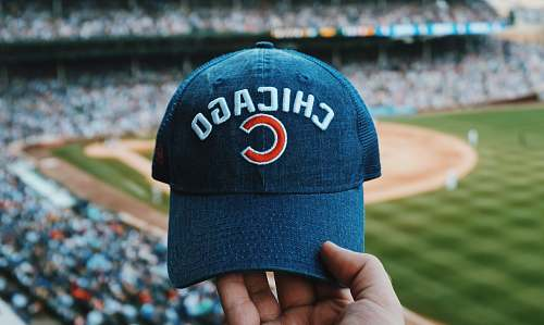 person person holding blue Chicago Cubs cap people